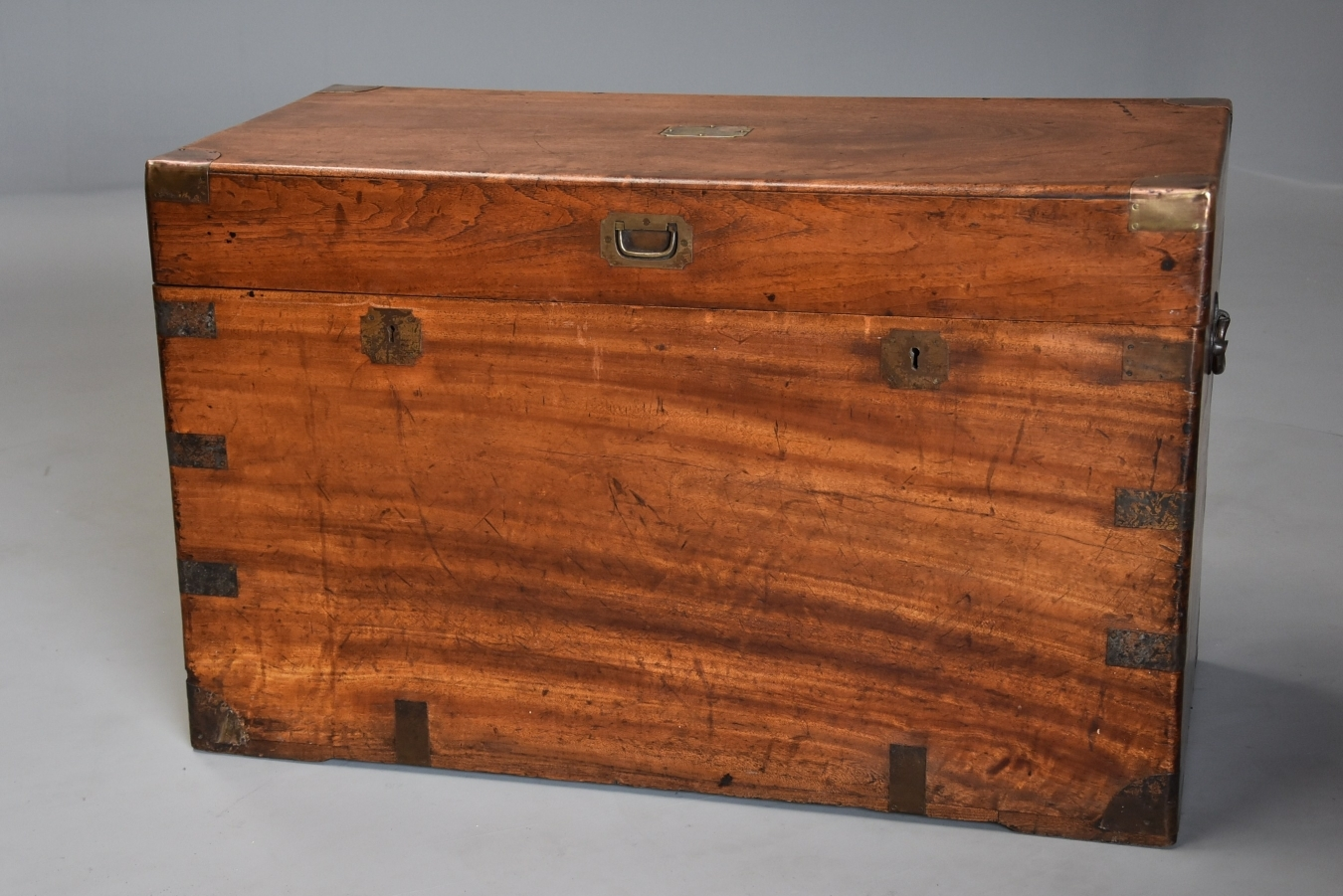 19thc Camphor Wood Trunk Trendfirst