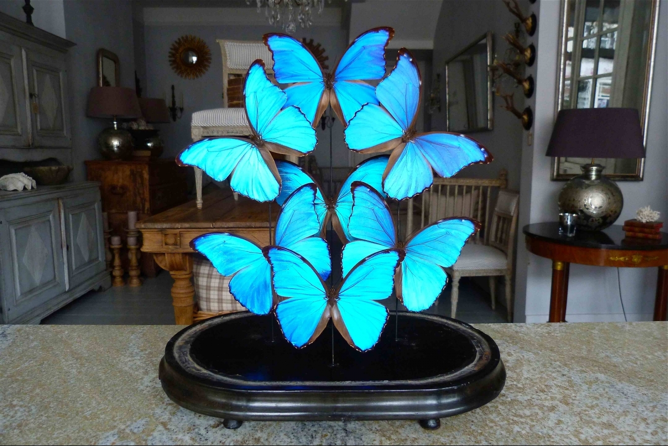 Victorian Butterfly Dome Trendfirst