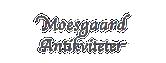 Moesgaard Antiques
