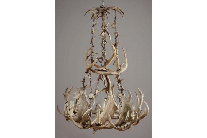 Horn Ceiling Lamp