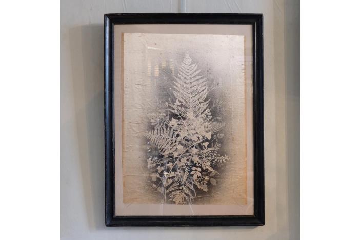 Framed Silk Print